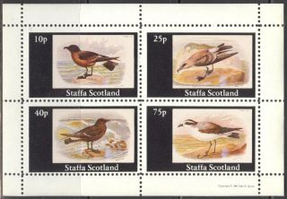 Staffa (br.  Local) 1981 Birds V Sheet 4 Ns272 photo