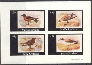 Staffa (br.  Local) 1981 Birds V Sheet 4 Imperf.  Ns273 photo