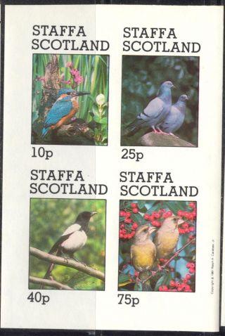 Staffa (br.  Local) 1981 Birds Vi Pigeon Sheet 4 Imperf.  Ns274 photo