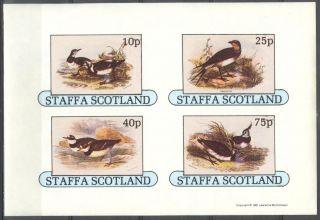 Staffa (br.  Local) 1981 Birds Vii Sheet 4 Imperf.  Ns277 photo