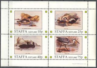 Staffa (br.  Local) 1981 Birds Viii Ducks Sheet 4 Ns279 photo
