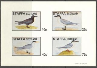 Staffa (br.  Local) 1981 Birds Xi Sheet 4 Imperf.  Ns285 photo