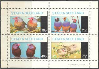 Staffa (br.  Local) 1981 Birds Xii Sheet 4 Ns287 photo