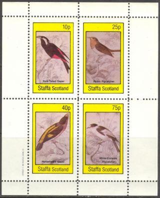 Staffa (br.  Local) 1982 Birds Iii Gaper Flycatcher Sheet 4 Ns301 photo