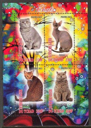2013 Domestic Cats I Sheet Of 4 6t 221 photo