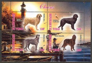 2013 Dogs I Sheet Of 4 6t 128 photo