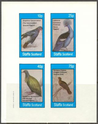 Staffa (br.  Local) 1982 Birds Ix Pigeons Sheet 4 Imperf.  Ns312 photo