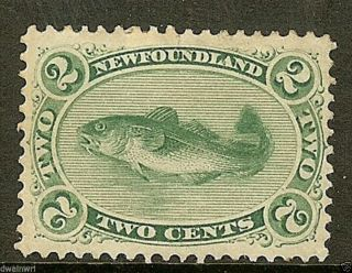 Canada,  Newfoundland 1870 Sc 24a,  2¢ Green,  Yellow Paper,  Vf,  Ng - Cv $180.  00 photo