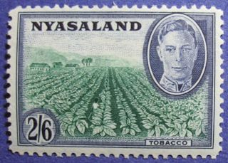 1945 Nyasaland 2s6d Scott 78 S.  G.  154  Cs08812 photo