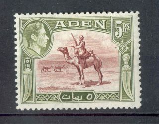 Aden Kgvi 1939 - 48 5r Red - Brown & Olive - Green Sg26 Mm photo