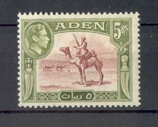 Aden Kgvi 1939 - 48 5r Red - Brown & Olive - Green Sg26 photo