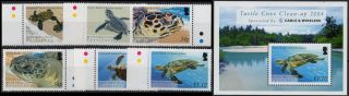 B.  I.  O.  T.  Sg 312 - 317 + Ms318 2005 Turtles Unmounted Mint/never Hinged photo