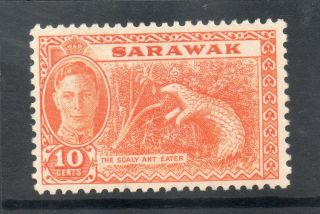 Sarawack Gv1 1950 10c Orange Sg 177 L.  H. photo