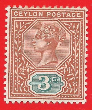 3c Terracotta / Blue - Green Stamp 1893 Ceylon Queen Victoria Sg245 photo