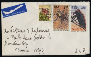 South Africa 475,  690,  2 On Cover - Insects,  Flowers photo