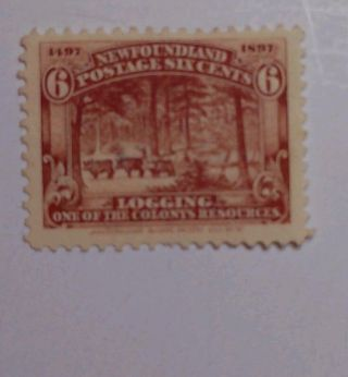 Newfoundland - Sc 71 - 1897 6c Logging Stamp - Brown - M/h/ng photo