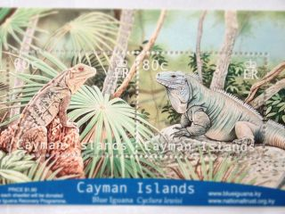 Post 1999 + Cayman Islands Miniature Sheet - Iguanas 2 V.  A +++ photo