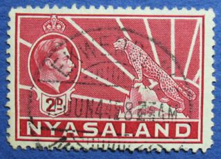 1942 Nyasaland 2d Scott 57a S.  G.  133a  Cs08903 photo