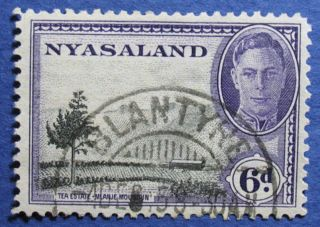 1945 Nyasaland 6d Scott 74 S.  G.  150  Cs08920 photo