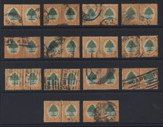 S.  Africa 1926 Orange Tree 6d 14 Horizontal Pairs Cv£630 photo