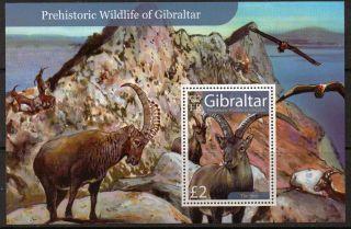 Gibraltar Sgms1225 2007 Prehistoric Wildlife S/s photo