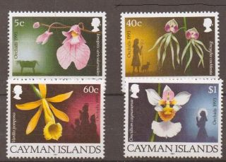 Cayman Islands Sg769/72 1993 Orchids photo