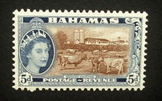 Bahamas Qeii 5d Stamp C1954 - 63 Modern Dairying,  Mounted A883 photo
