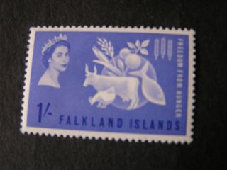 Falkland Is.  Scott 146,  1/ - Value 1963 Freedom From Hunger Issue Mlh photo