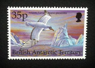 British Antarctic Territory Qeii 35p Bird Stamp C1993 Antarctic Fulmar,  Um,  A918 photo