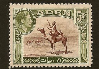 Aden : 1939 5 Rupees Red - Brown And Olive Green Sg 26 photo