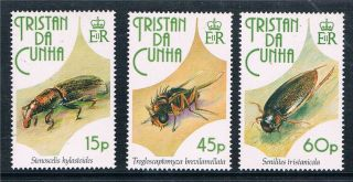 Tristan Da Cunha 1993 Insects Sg539/41 photo