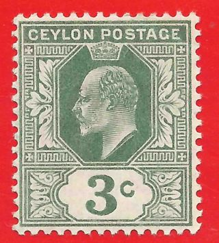 3c Green Stamp 1904 - 05 Ceylon King Edward Vii Sg278 Creased photo