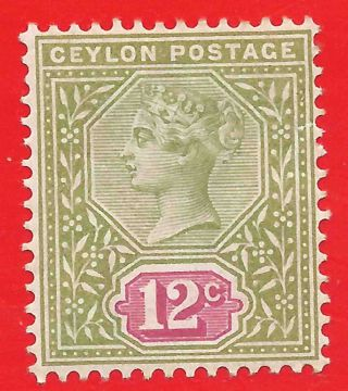 12c Sage Green / Rose Stamp 1899 - 1900 Ceylon Queen Victoria Sg260 photo