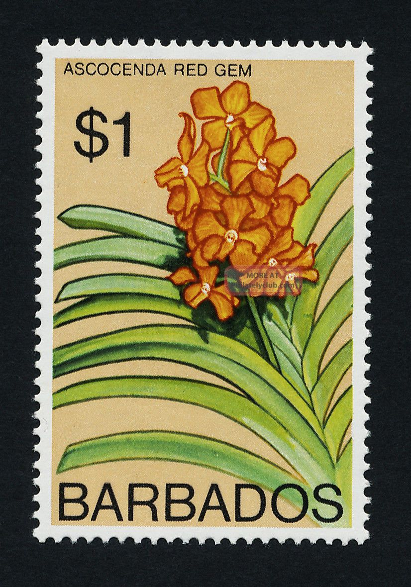 Barbados 408a Flower British Colonies & Territories photo