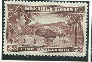 Sierre Leone - 1938 - Sg198 - Cv £ 10.  00 - Mounted photo