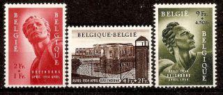 Belgium 1954 photo