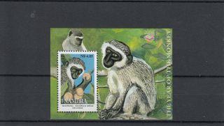 Namibia 2004 Vervet Monkeys Sg Ms958 Miniature Sheet photo