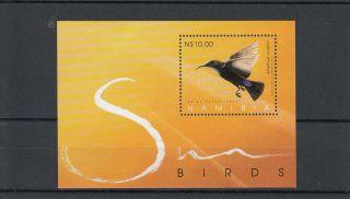 Namibia 2005 Sunbirds Sg Ms989 Amethyst Sunbird Birds photo