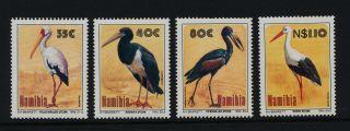 Namibia 766 - 9 Birds photo