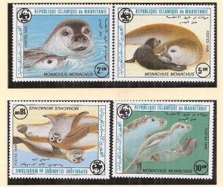 (72291) Mauritania - Seal - U/m 1985 photo