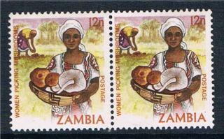 Zambia 1981 12n Definitive Pair Sg 342 photo