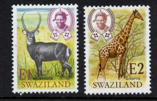 Swaziland 228 - 9 Giraffe,  Waterbuck,  Animals photo