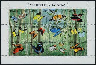 Tanzania 1054m Butterflies photo