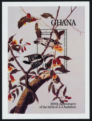 Ghana 984 Birds,  Flowers,  Art,  Audubon photo