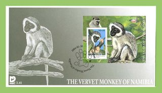 Namibia 2004 The Vervet Monkey Miniature Sheet On First Day Cover photo