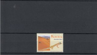 Namibia 2007 Biodiversity Definitives Sg 1058 Web - Footed Gecko Reptiles photo