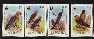 Lesotho 512 - 5 Wwf Birds photo