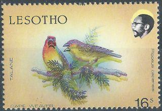 Lesotho.  1988.  Birds.  Error (2498) photo