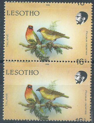 Lesotho.  1988.  Birds.  Error (2499) photo