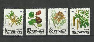 1204.  Botswana 1991 Christmas photo